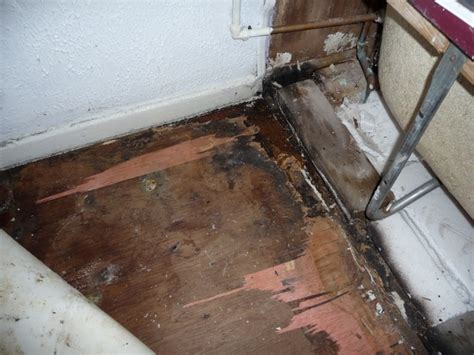 Fixing Hardwood Floors Water Damage by Bathroom Floor Repair Water Damage Wood Floors