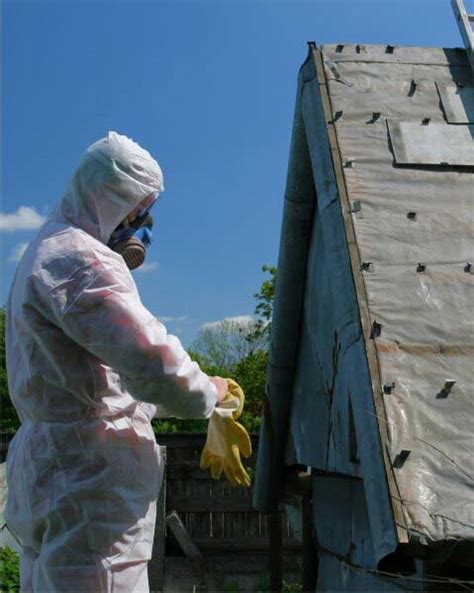 leave asbestos removal   professionals