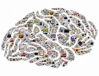 Memory Psychology Process Introduction Learn Encoding Brain