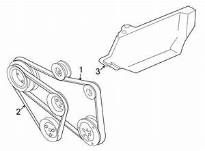 2001 Volkswagen Cabrio Accessory Drive Belt  Alternator