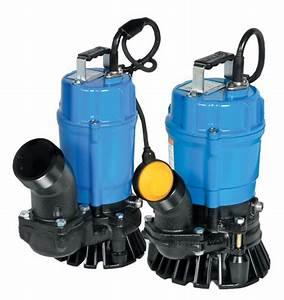 Pompe à Eau électrique : pompe submersible 2 location lou tec ~ Medecine-chirurgie-esthetiques.com Avis de Voitures