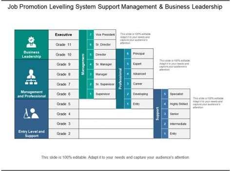 job promotion levelling system support management