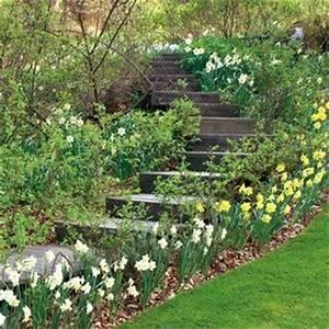 118 best jardin de rocailles images on pinterest rockery With salon de jardin confortable et zen 11 71 idees et astuces pour creer votre propre jardin de rocaille
