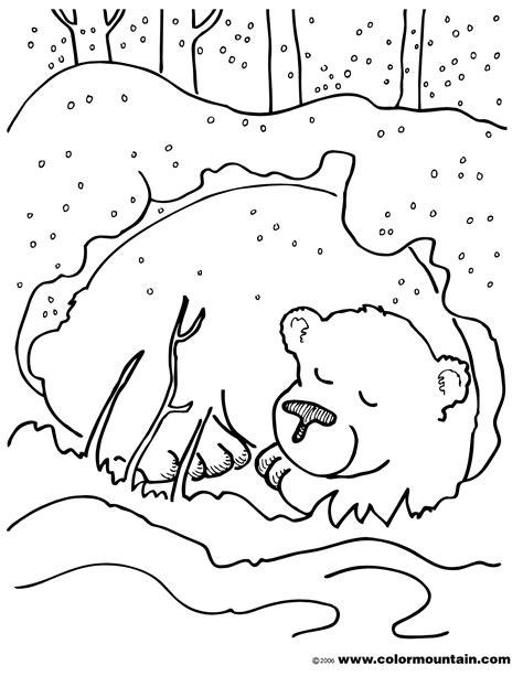 hibernating bear color sheet coloring page preschool