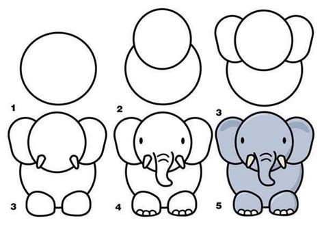 simple instructions  drawing  elephant zoo animals