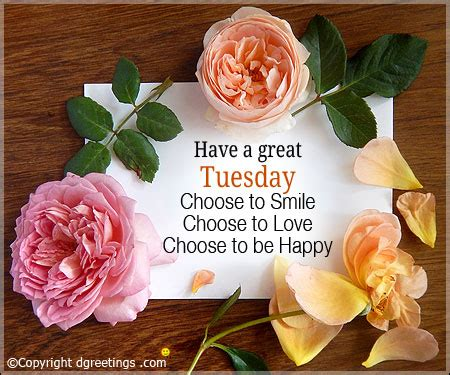 tuesday cards happy tuesday