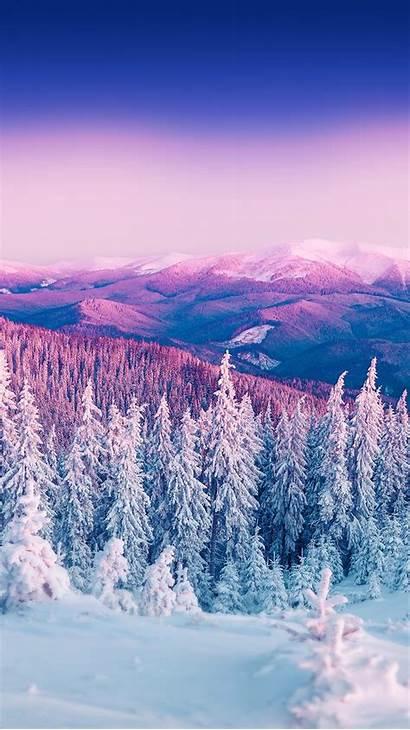 Nature Iphone Winter Forest Scenery Iphones Wallpapers