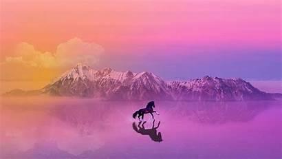 4k Horse Landscape Wallpapers Sunset Animals Backgrounds
