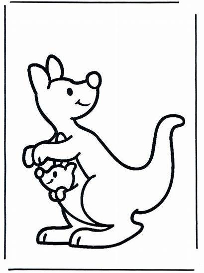 Kangaroo Animals Funnycoloring Coloring Pages Advertisement