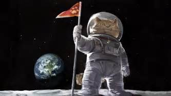 cat astronaut cat astronaut on the moon wallpapers and images