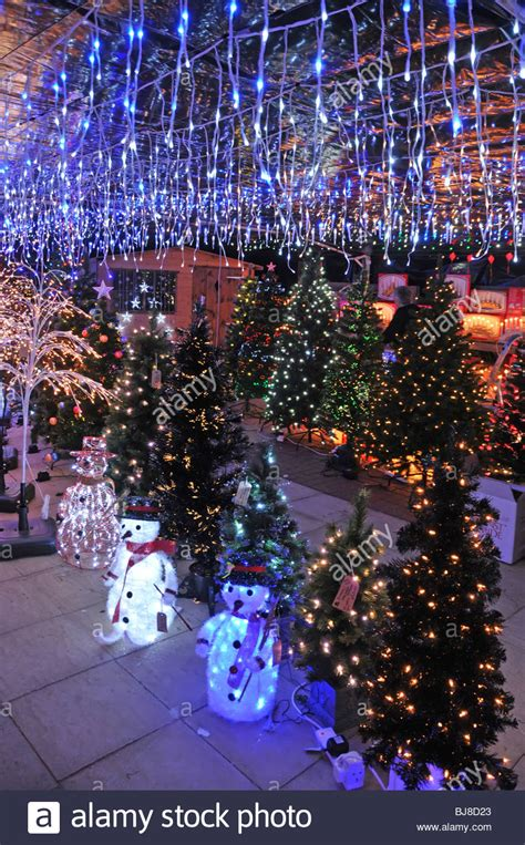 garden center indoor display of trees and lights for sale stock photo royalty free