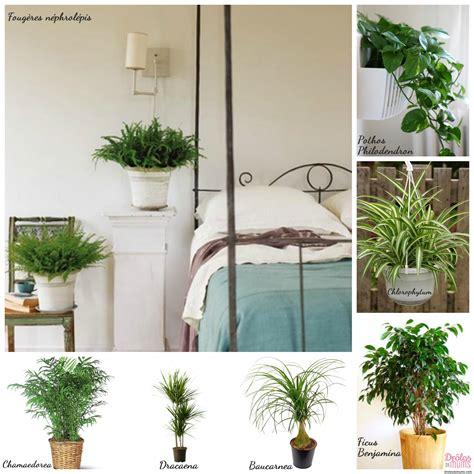 plantes dépolluantes chambre à coucher quelles plantes choisir pour dépolluer ma maison et les
