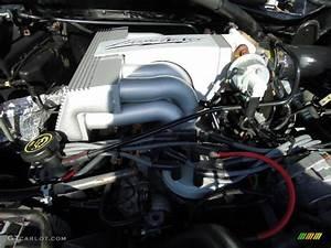 1993 Ford F150 Svt Lightning 5 8 Liter Svt Lightning Ohv