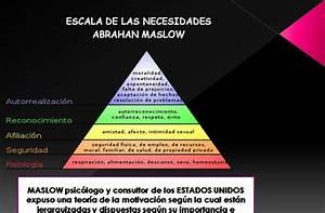 Fundamentos De Administraci U00d3n  Escala De Las Necesidades