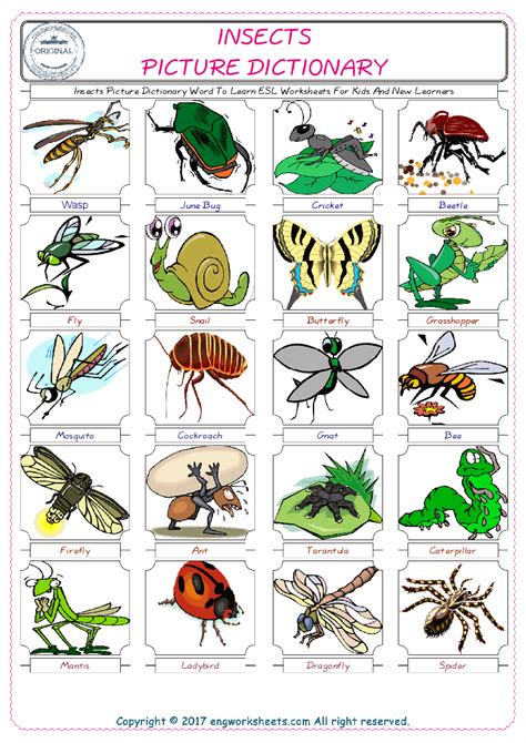 Free Insects Printable Preschool Worksheets Free Best Free Printable Worksheets