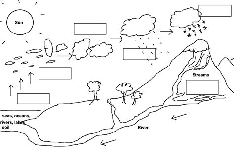 The Gallery For > Water Cycle Worksheet