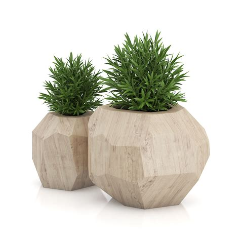 wooden plants two plants in modern wooden pots by cgaxis 3docean