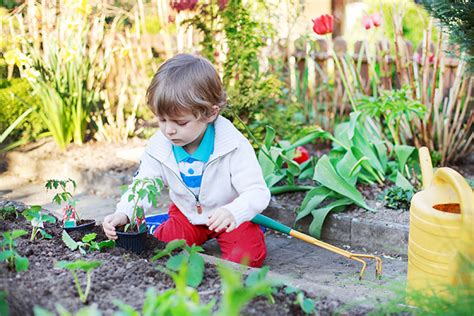 Plant A Kid-friendly Garden With Your Elf This Spring