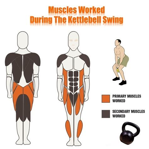 kettlebell swing training swings muscles benefits worked kettle workout bell kettlebells functional exercises workouts benefit they fitness why better than