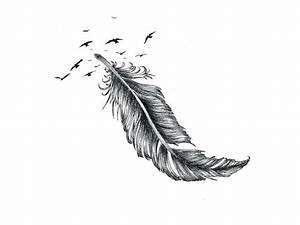 Signification Plume Noire : dessin tatouage plumes kolorisse developpement ~ Carolinahurricanesstore.com Idées de Décoration