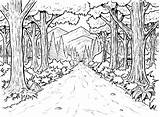 Forest Coloring Pages Printable Colouring Background Incoming Terms sketch template