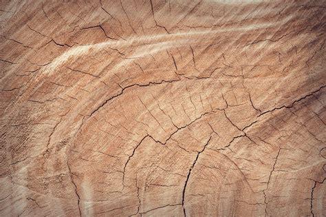 aldi kiest voor duurzaam hout en papier de houtkrant