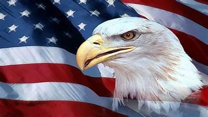 Independence Declaration Flag American Eagle