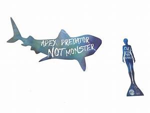 Save Sharks Stickers