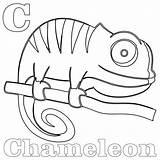 Chameleon Coloring Kameleon Sheet Kolorowanki Sheets Dzieci Dla Animal Wydruku sketch template