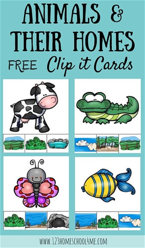 learning about animal homes free printables and activities 310   animal homes clip it cards