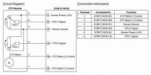 Kia Sedona  Etc  Electronic Throttle Control  System