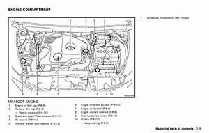 1999 Nissan Maxima Engine Diagram Lovely Nissan Altima 2 5