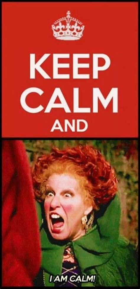 Hocus Pocus Meme - i am calm hocus pocus disney funnies pinterest