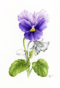 Watercolor Pencil Painting Flower