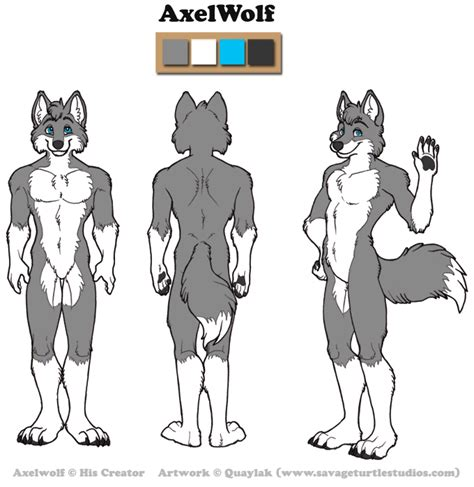 25+ Wolf Fursona Ref Sheet Blank Pics - FreePix
