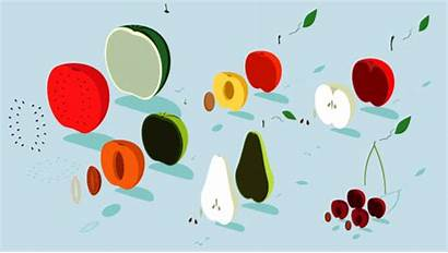 Fruit Animated Gifs Giphy Animation Healthy Behance