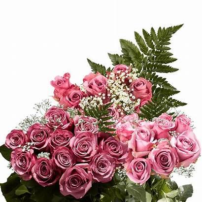 Roses Dozen Lavender Globalrose Fillers