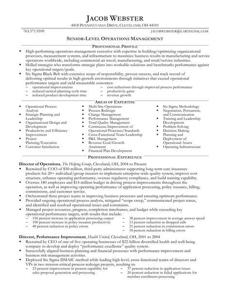 senior marketing professional resume 24 best sle executive resume templates