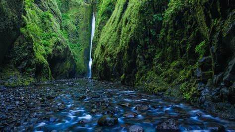 oneonta gorge waterfall oregon wallpapers hd wallpapers