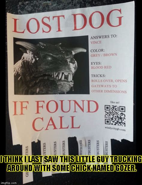 Lost Dog Meme - lost dog imgflip