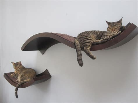 floating cat shelves 11 tips for a safe stylish kitty home i have cat