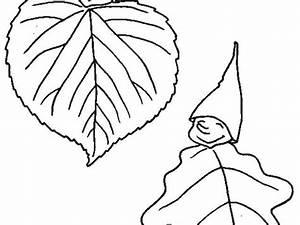 Feuilles D Automne à Imprimer : modele coloriage feuille d automne coloriage octobre les beaux dessins de les mois imprimer et ~ Nature-et-papiers.com Idées de Décoration