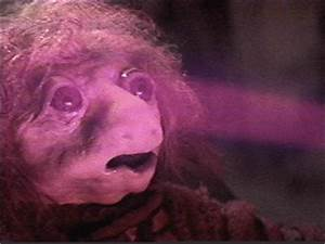"""Any """"Dark Crystal"""" fans out there? This guy was in my mom ..."""