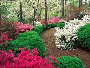 Garden Wallpaper Free Download