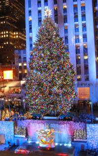 rockefeller center christmas tree 2013 maine best template collection