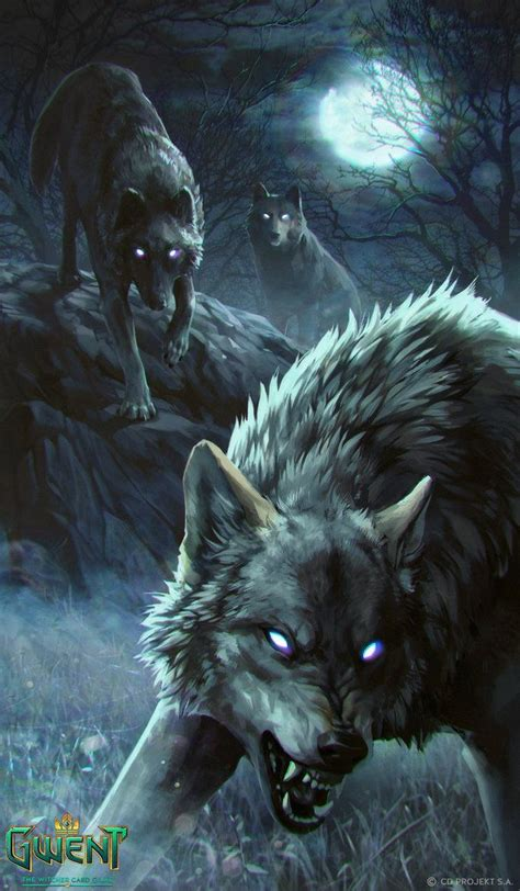 Wolf Drawing Wallpaper by Angry Wolves Wallpaper Iphone Iphonewallpapers Wolf