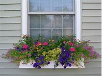 flower boxes for windows Container Gardening: Dos and DON'Ts - Peterson Lawn Services