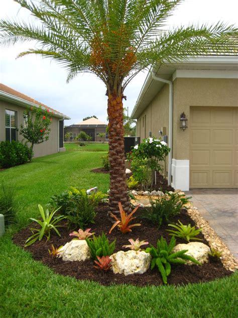 landscape ideas florida landscaping with bromeliads multi foxtail bromeliad gardening winkler landscape outdoors