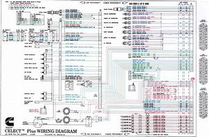 Cummins M11 Ecm Wiring Diagram
