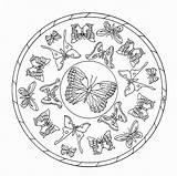 Mandalas Mandala Mariposas Colorear Coloring Mariposa Insectos Cuento Reino Christian Leer Gratis Girasoles Libro Vivir Propongo Os Alas Cuentos Pilastre sketch template